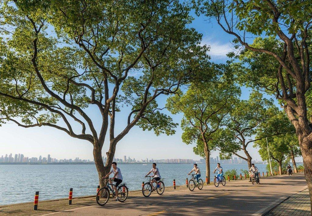 武汉市东湖绿道:联合国人居署中国改善城市公共空间首批试点项目