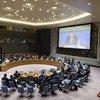 Совет Безопасности ООН провел брифинг, посвященный семидесятой годовщине принятия Женевских конвенций