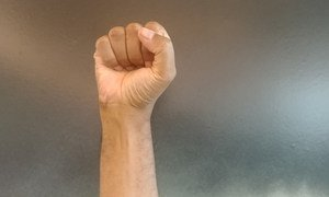 File photo of fist raised in protest.
