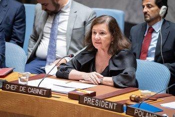 Viotti disse que papel do Conselho de Segurança na manutenção da paz e segurança internacionais continua indispensável.