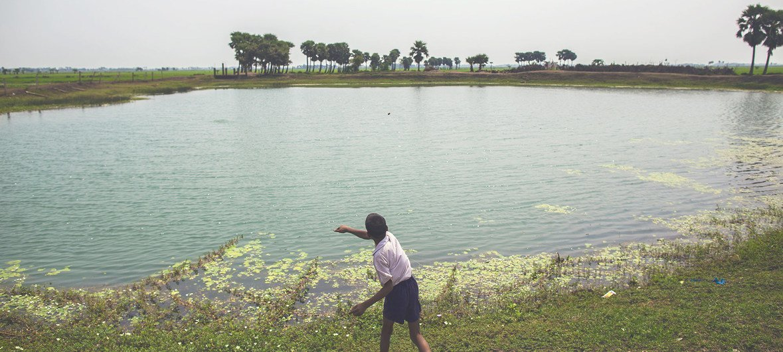 Relatório estima que as regiões afetadas por baixa qualidade da água podem ter um corte de um terço no seu potencial econômico.