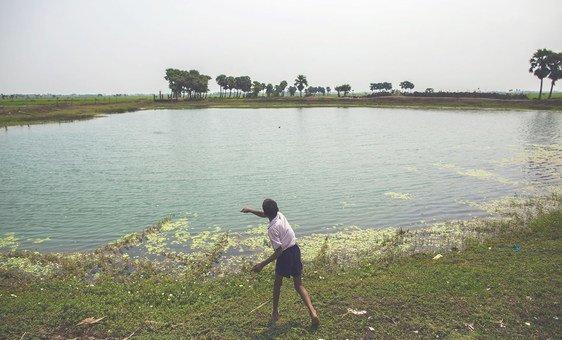 Un étang dans le village de Dhokandpur, en Inde, collecte l'eau de pluie qui est ensuite utilisée par les villageois uniquement pour boire.