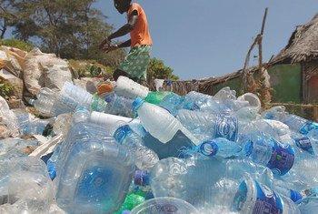 كل يوم جمعة يقوم سكان بلدة واتامو في كينيا مع جمعيات حماية المحيطات بجمع الزجاجات البلاستيكية من الشاطئ. 2 ديسمبر 2017.