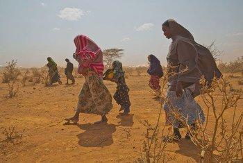 Ukatili umesababisha zaidi ya watoto milioni 1.9 kusitisha masomo magharibi na Afrika ya Kati