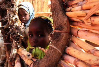 Children peer through a reed fence at a site for the displaced in Kasesa neighbourhood of Damaturu, Nigeria.