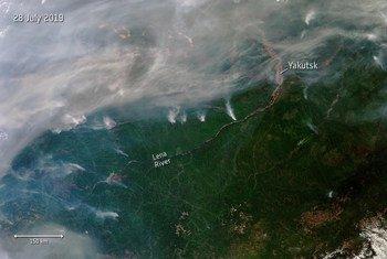 Archivo 2019: Cientos de incendios forestales se han desatado en Siberia. Algunos se pueden ver desde el espacio, como se ve en esta imagen de satélite.