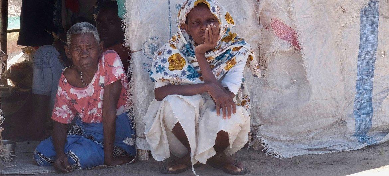 Crise humanitária ameaça afetar os meios de subsistência