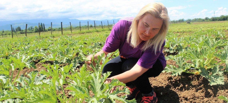 Die Farm von Irina Vasilyeva in Westgeorgien dient als Modell für die landwirtschaftliche Ausbildung.