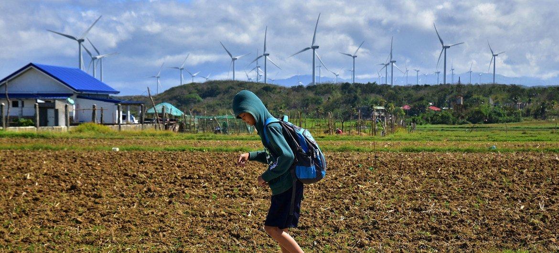 Во время пандемии только сектор возобновляемой энергии показывал высокие темпы роста, но даже этого роста далеко не достаточно. Ветряная электростанция, Филиппины
