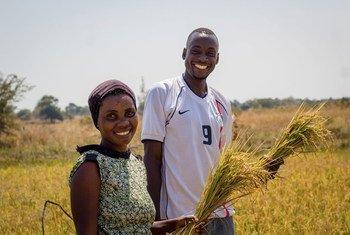 तन्ज़ानिया के गाँवों में वर्कशॉप के ज़रिये समावेशी व टिकाऊ कृषि पर चर्चा आयोजित की जा रही हैं.