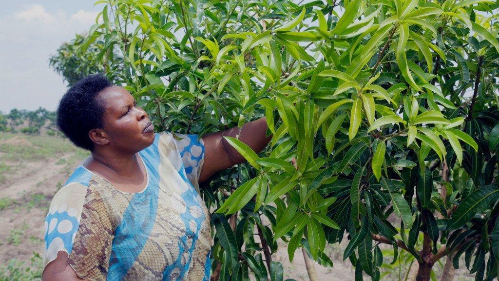Mjasiriamali Julian Omalla wa nchini uganda, anajivunia biashara ya kutengeneza juisi bora akiwa na zaidi ya wateja milioni 5