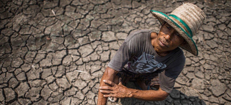 सूखे जैसी चरम मौसम की घटनाओं से दुनिया भर में किसानों को आर्थिक नुक़सान उठाना पड़ रहा है.