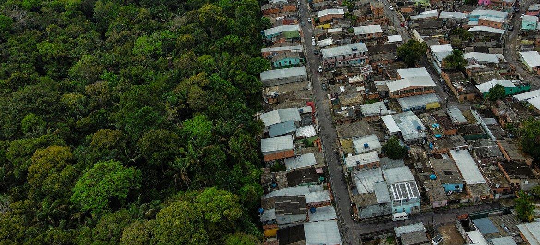 La Secretaría del Convenio sobre la Diversidad Biológica busca dar soluciones para que los seres humanos vivan en armonía con la naturaleza en lugares como la Amazonía.