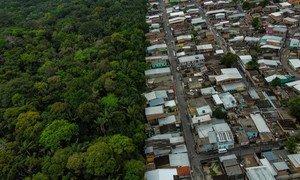 """تهدف اتفاقية الأمم المتحدة بشأن التنوع البيولوجي إلى توفير حلول لمساعدة البشر على العيش """"في وئام مع الطبيعة"""" في أماكن مثل غابات الأمازون في البرازيل."""