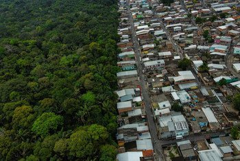 The UN Convention on Biological Diversity aims to provide solutions to help humans live 'in harmony with nature' in places like the Amazon forest in Brazil.