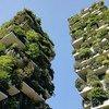 При строительстве повсеместно должны использоваться экологичные материалы, а сами здания должны быть энергоэффективными, убежден глава ООН. На фото: здания в Милане, Италия