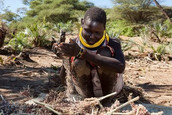 Families in Turkana are using irrigation farming to grow food during the prolonged drought in Kenya.