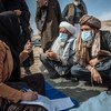 La ONU apoya a las familias desplazadas en Afganistán a las que suministra refugio y protección.
