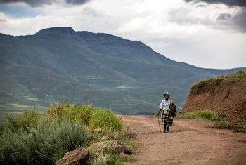 Lesotho's elderly population is at high risk from COVID-19.