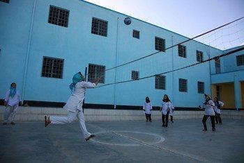 Des jeunes filles jouent au volleyball dans une école d'Herat, en Afghanistan (archives 2016).