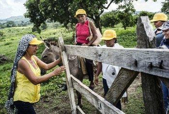 مزارعات يحضرن ورشة عمل حول التكامل والمصالحة في مورووا، كولومبيا.