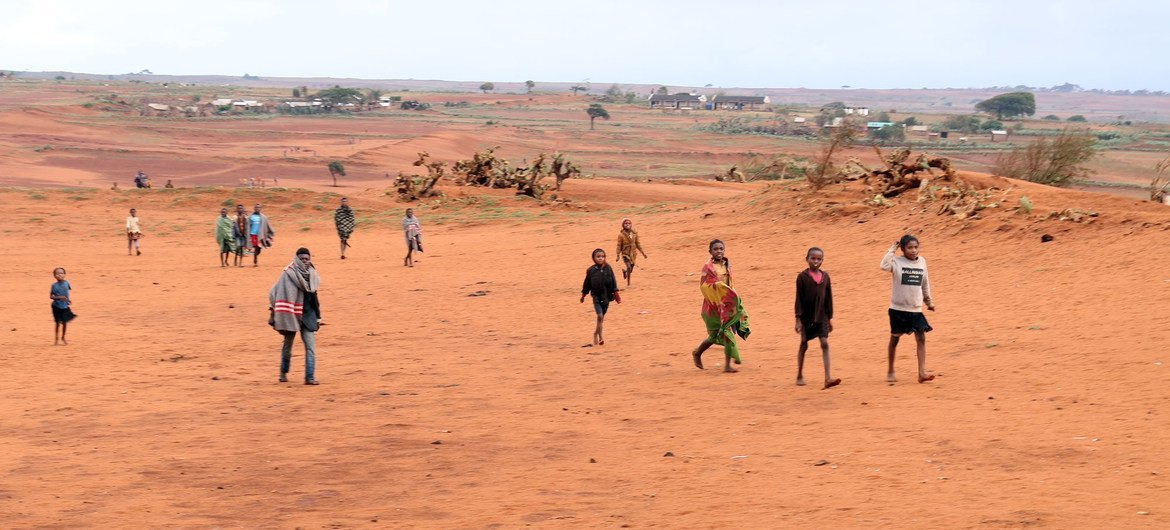 Climate alteration  has led to creeping desertification successful  parts of confederate  Madagascar.