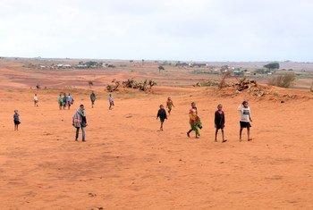 أدى تغير المناخ إلى التصحر في بعض أجزاء جنوب مدغشقر.
