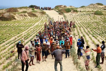 The community in Maroalomainty in the south of Madagascar has planted vegetation to mitigate the effects of climate change.