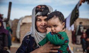 因阿富汗不安全局势而流离失所的人们在赫拉特省西部的一个营地避难。