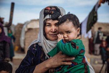 Афганцы, вынужденные покинуть свои дома из-за вооруженного конфликта, находят временное пристанище в лагере беженцев.