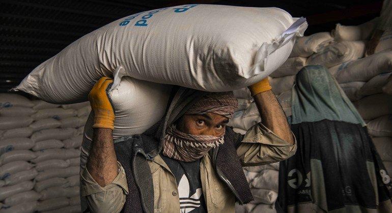 Afganistán: Los talibanes afirman que garantizarán la seguridad del personal humanitario