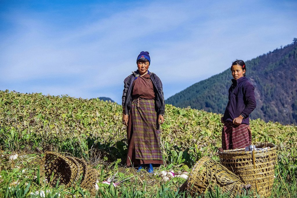 Au Bhoutan, les agricultrices doivent s'adapter au changement climatique.
