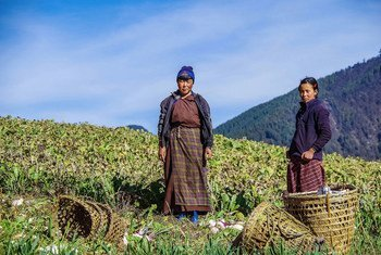 In Bhutan, farmers are needing to adapt to climate change.