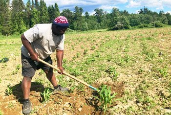 Farmers can grow their own crops on one tenth of an acre of land