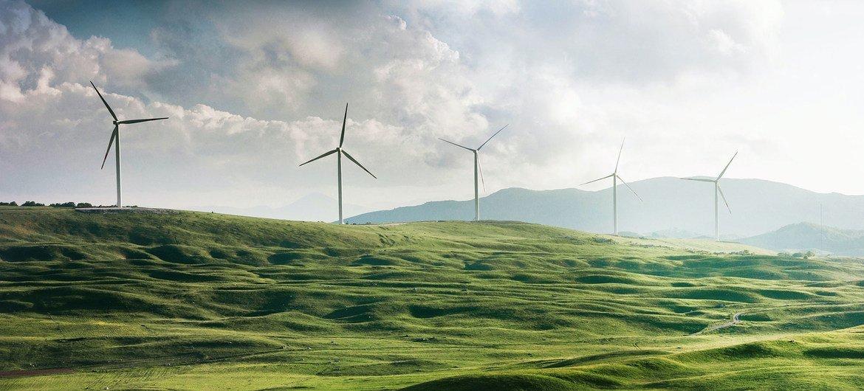 Con el objetivo de concientizar sobre el cambio climático global hoy se celebra el Día Mundial por la Reducción de las Emisiones de CO2