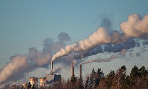 National governments are the main drivers of change to reduce harmful emissions.
