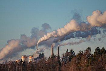 हानिकारक उत्सर्जन कम करने में राष्ट्रीय सरकारें ठोस मदद कर सकती हैं.