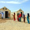Niñas afganas desplazadas por el conflicto asisten a clases en un campamento para personas desplazadas.