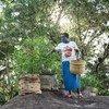 مزارعة كينية تقوم بتجربة مجموعة من البذور الجديدة التي تساعد على زيادة التنوع البيولوجي في المكان الذي تعيش فيه.