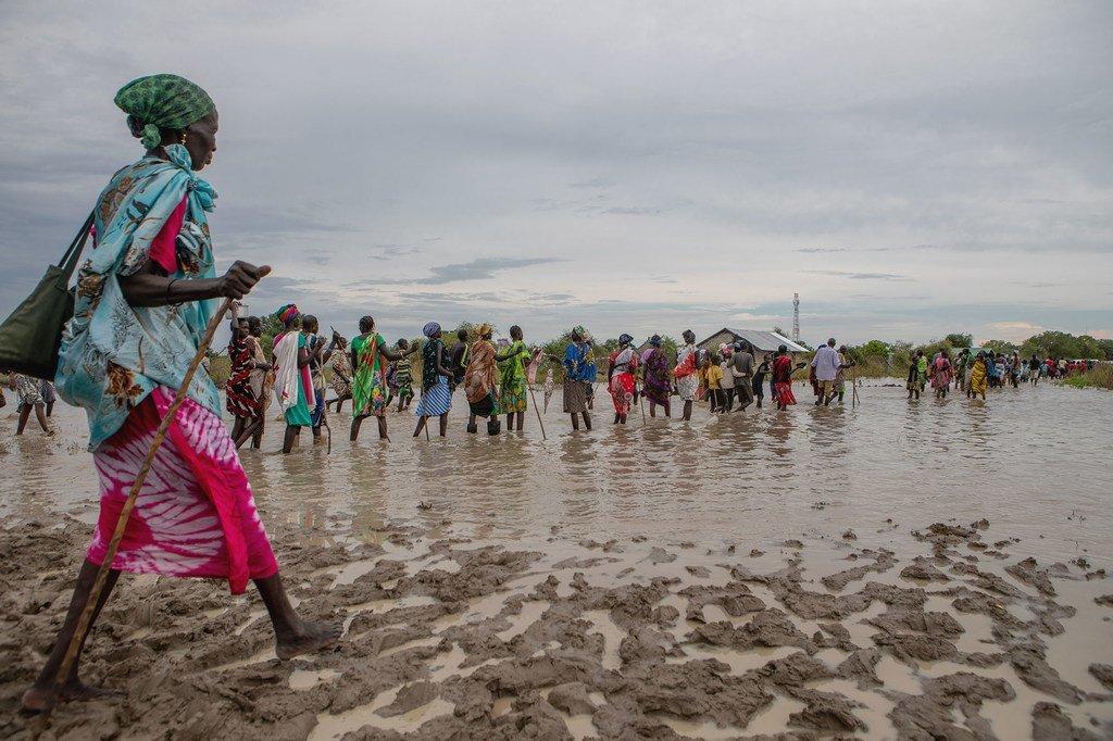 南苏丹受到严重洪水侵袭,导致近70万人受灾。