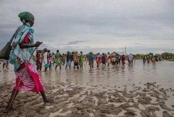 نحو 700 ألف شخص تأثروا بالفيضانات في جنوب السودان.