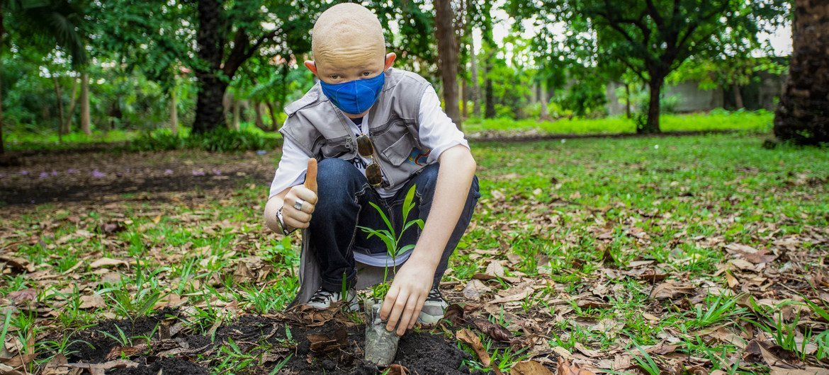 Trees are being planted in the Democratic Republic of the Congo to help fight climate change.