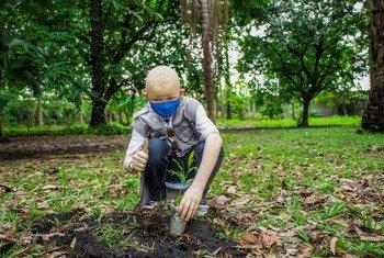En la República Democrática del Congo se plantan árboles para ayudar a mitigar el cambio climático.