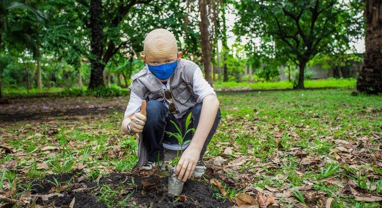 Des arbres sont plantés en République démocratique du Congo pour aider à lutter contre le changement climatique.