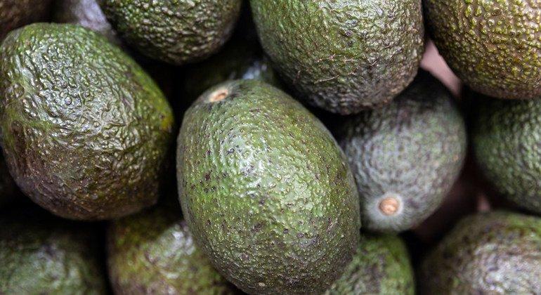 Food Heroes: Ethiopian avocado farmer's 'transformational' crop