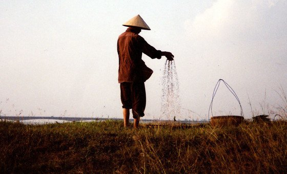 A farmer sows seeds in a field along Red River in northern Viet Nam.