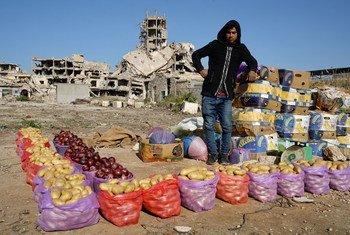Молодой ливиец продает фрукты и овощи в Старом городе Бенгази. (файл)
