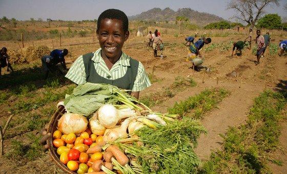 Estudante no Zimbábue