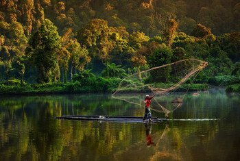 A man fishes in a forest lake in Indonesia.
