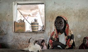 A Somali resident sells meat at a market in Hudur, where food shortages continue to cause suffering.